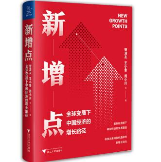 新增点:全球变局下中国经济的增长路径PDF电子书下载