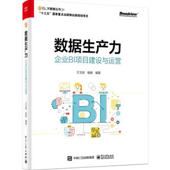 数据生产力:企业BI项目建设与运营PDF电子书下载