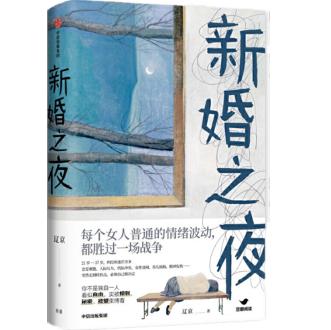 新婚之夜辽京PDF+mobi电子书下载完整版