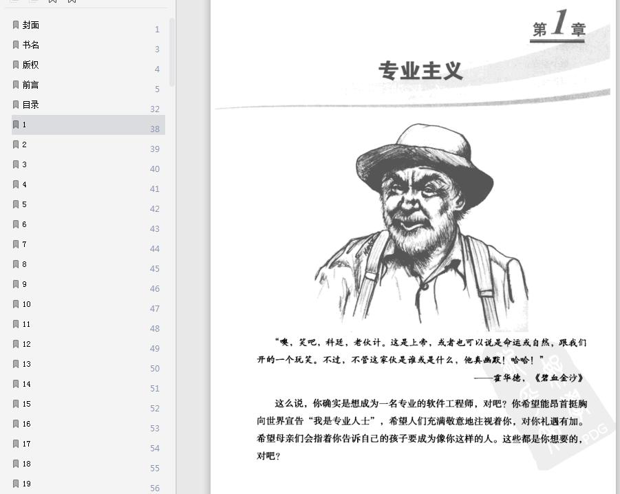 程序员的职业素pdf全文在线截图1
