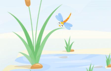 蜻蜓旅行app