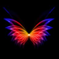 动态壁纸秀秀APP安卓V1.0手机最新版
