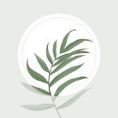 Blossom植物识别app1.0.0最新版
