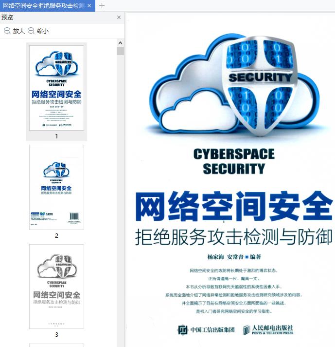 网络空间安全拒绝服务攻击检测与免费在线阅读截图0