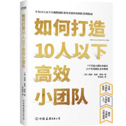 如何打造10人以下高效小团队PDF电子书下载免费版