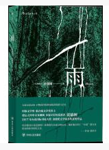 黄锦树《雨》pdf精彩在线完整文字版