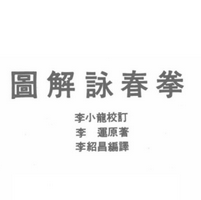 图解咏春拳李运电子版免费阅读