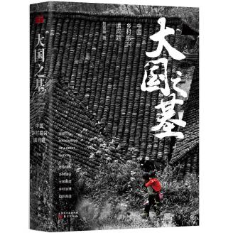 大国之基:中国乡村振兴诸问题PDF电子书下载免费版