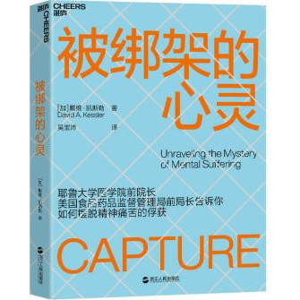 被绑架的心灵PDF+mobi+epub电子书下载