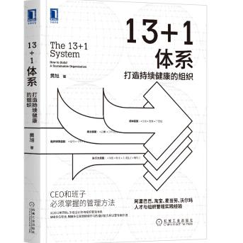 13+1体系:打造持续健康的组织PDF电子书下载免费版