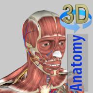 3D Anatomy安卓付费版